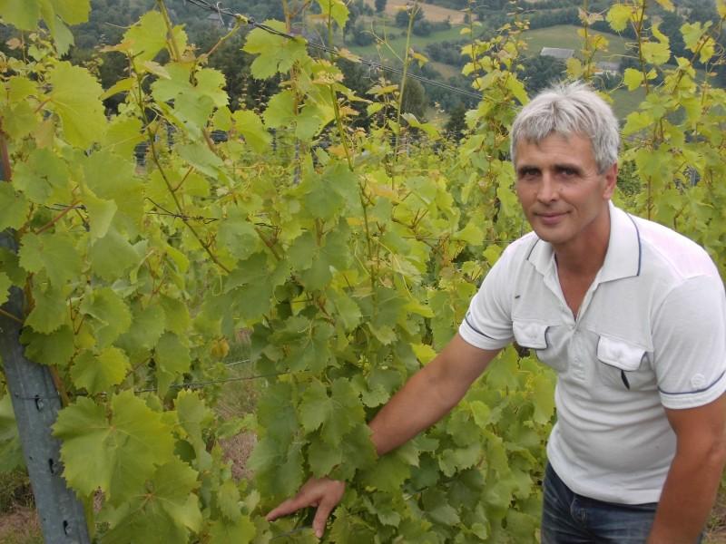 Wino Chryk 2