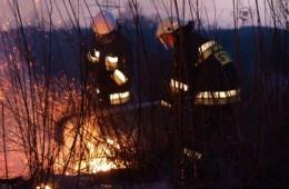wypalanie-traw3